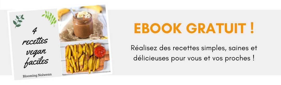 Bannière Ebook Gratuit