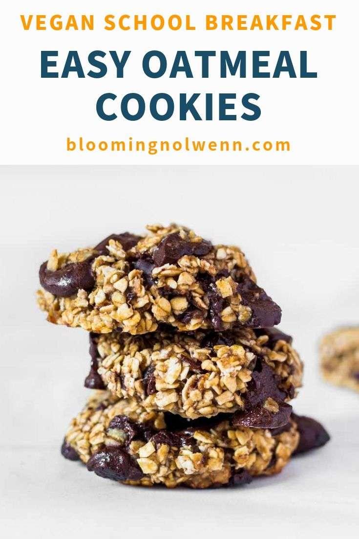 oatmeal banana cookies
